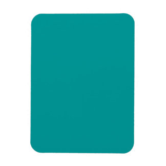 Teal Template Magnet