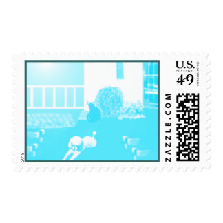 Teal Toy Poodle & Black Cat In The Yard Stamp