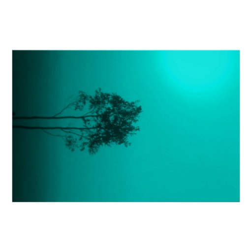 Teal Trees Poster