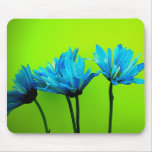 Teal Turquoise Daisies on Lime Green Flowers Gifts Mouse Pads