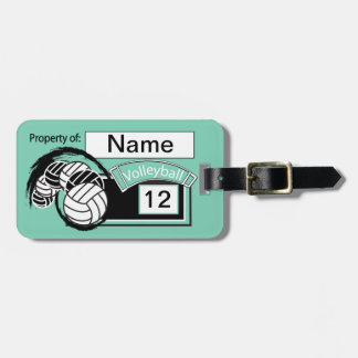Teal Volleyball | DIY Background Color Luggage Tag