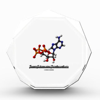 Team Adenosine Triphosphate (ATP Molecule) Awards