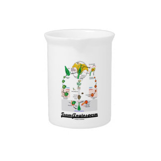 Team Angiosperm Alternation Of Generations Flower Drink Pitchers