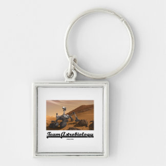 Team Astrobiology (Curiosity Mars Rover Landscape) Silver-Colored Square Keychain
