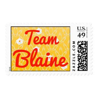 Team Blaine Postage Stamp