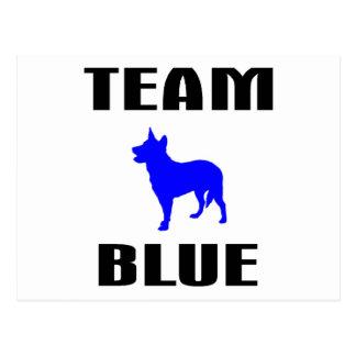 Team Blue Post Card