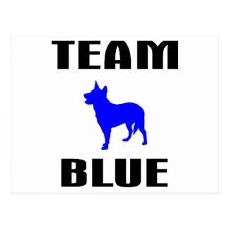 Team Blue Postcards