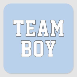 Team Boy Gender Reveal Party Stickers
