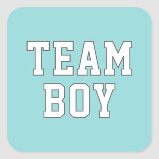 Team Boy | Gender Reveal Party Stickers