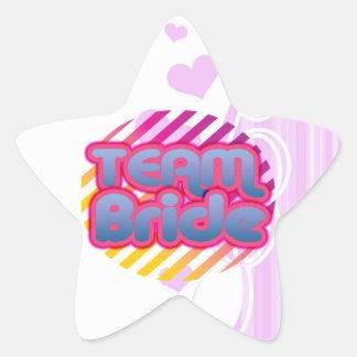 Team Bride Bridesmaids bachelorette wedding party Star Sticker
