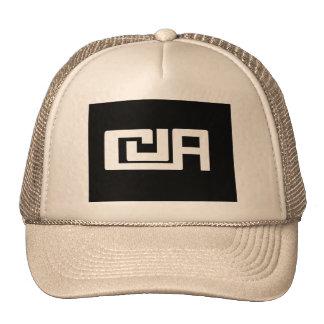 Team cap trucker hat