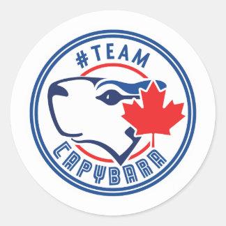 Team Capybara Stickers