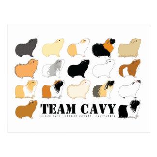 TEAM CAVY POSTCARD