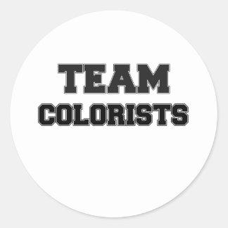 Team Colorists Classic Round Sticker