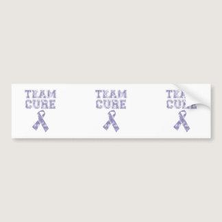 Team Cure (Periwinkle) Bumper Sticker