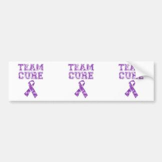 Team Cure Purple Bumper Stickers