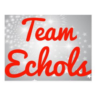 Team Echols Post Cards
