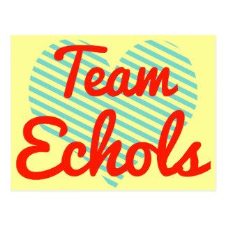 Team Echols Postcard