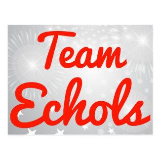 Team Echols Post Card