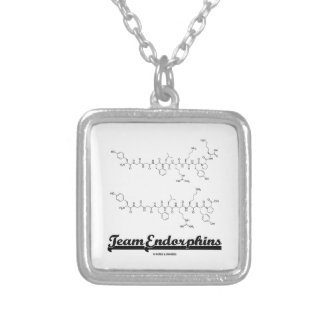 Team Endorphins (alpha- and beta-neoendorphins) Silver Plated Necklace