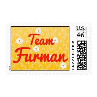 Team Furman Postage Stamp