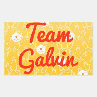 Team Galvin Sticker