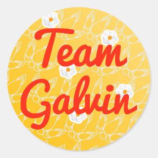 Team Galvin Stickers