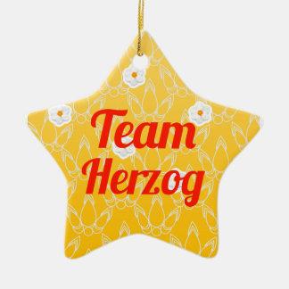 Team Herzog Double-Sided Star Ceramic Christmas Ornament