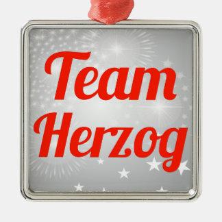 Team Herzog Square Metal Christmas Ornament