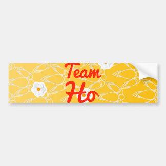 Team Ho Bumper Stickers
