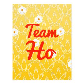 Team Ho Custom Flyer