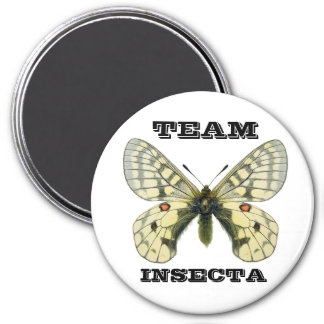 TEAM INSECTA usubakichiyou Parnassius 3 Inch Round Magnet