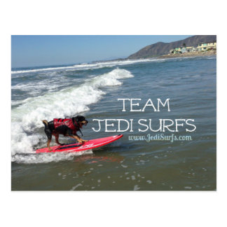 Team Jedi Surfs Line Postcard