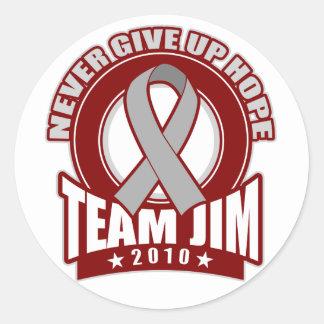 Team Jim Brain Cancer Walk 2010 Classic Round Sticker