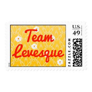 Team Levesque Stamp