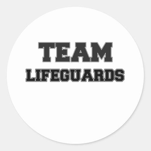 Team Lifeguards Sticker