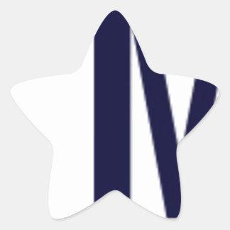 Team McCoy Star Sticker