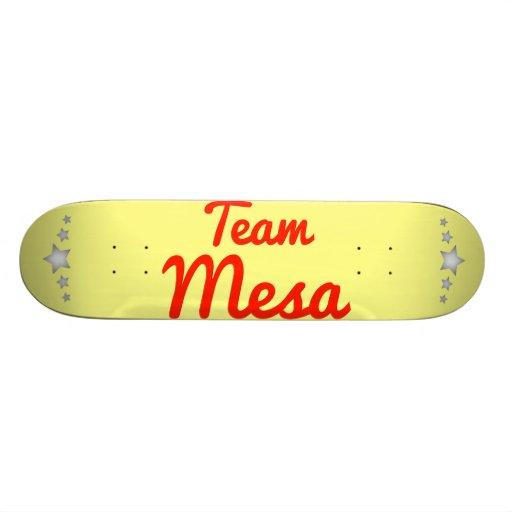 Team Mesa Skateboard Decks