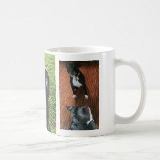 Team MKS mug
