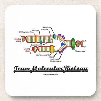 Team Molecular Biology (DNA Replication) Coaster