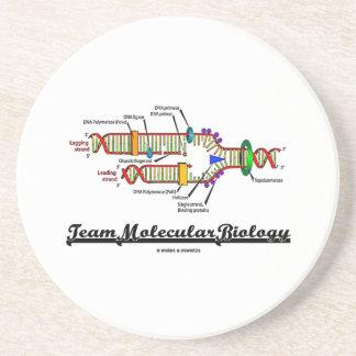 Team Molecular Biology (DNA Replication) Coasters