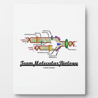 Team Molecular Biology (DNA Replication) Plaque