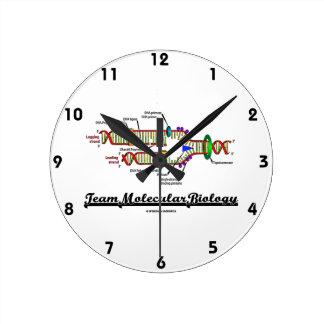 Team Molecular Biology (DNA Replication) Round Clock