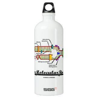 Team Molecular Biology (DNA Replication) Water Bottle