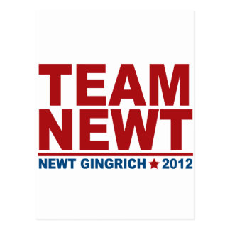Team Newt Gingrich 2012 Postcard