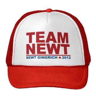 Team Newt Gingrich 2012 Trucker Hat