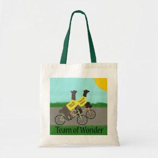 Team of Wonder Project Bag