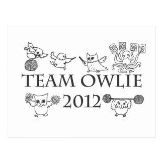 Team-owlie-2012 Postcard