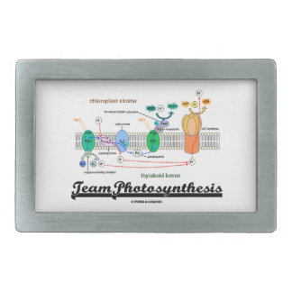 Team Photosynthesis (Light-Dependent Reactions) Belt Buckle