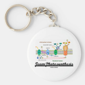 Team Photosynthesis (Light-Dependent Reactions) Keychain